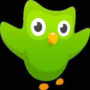 Duolingo ikon