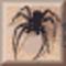 Webripper ikon